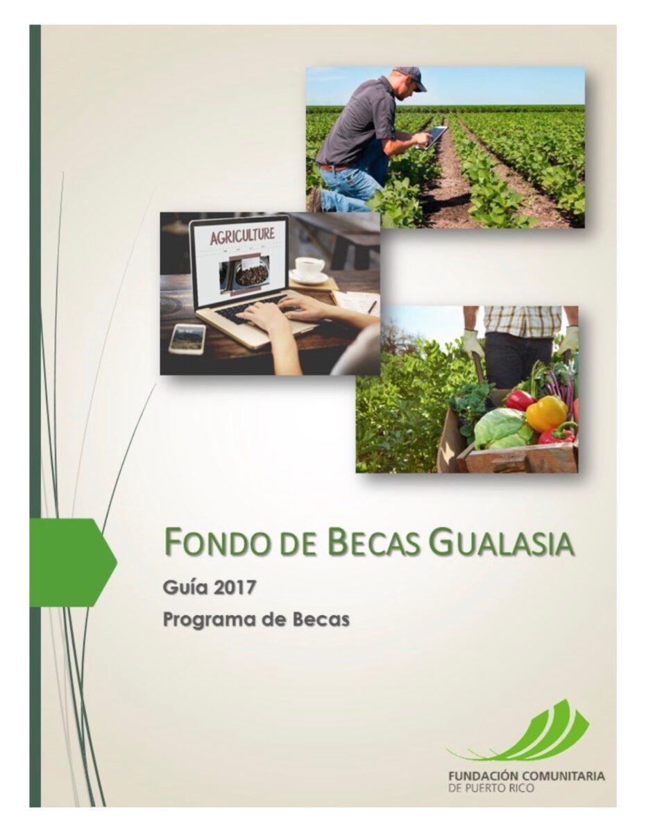 Fondo de becas gualasia fundaci n comunitaria - Becas de comedor 2017 ...